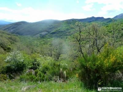 Montaña Palentina-Fuentes Carrionas;las hoces del cabriel monasterio el paular viajes culturales la